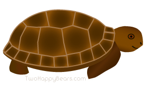 Words that begin with the letter T - Turtle.